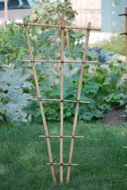 88 best trellis images on pinterest garden trellis gardening
