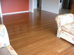 Cleaning Laminate Floors With Steam Mop How To Clean Bamboo Floors With A Shark Or Bissell Steam Mop