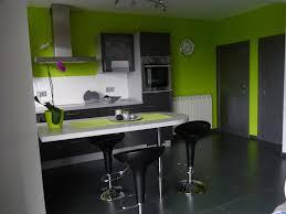 cuisine verte et grise deco pour cuisine grise collection et gris dans la cuisine cocon