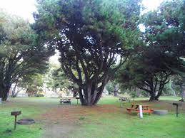 thanksgiving camping california manchester california rv camping sites manchester beach