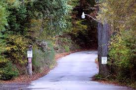 is bohemian grove the real life secret society behind true