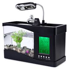 Aquarium For Home by Fish Tank 33 Rare Mini Fish Tank For Sale Pictures Design Mariska