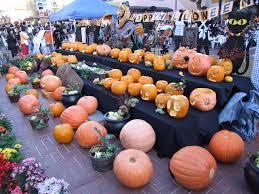 halloween in boston humour pumpkins living dead