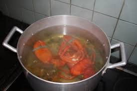 cuisine homard homard a la mayo