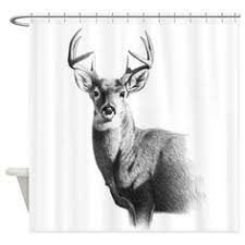 Whitetail Deer Shower Curtain Whitetail No 2 Shower Curtain Products Shower Curtains And