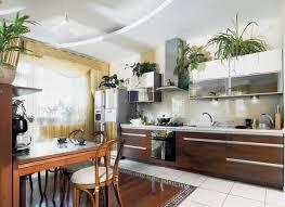indoor kitchen money saving kitchen decorating with indoor plants kitchen and decor