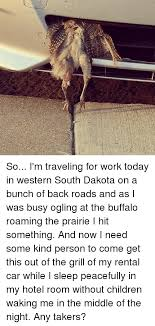South Dakota travel meme images 25 best memes about rental cars rental cars memes png