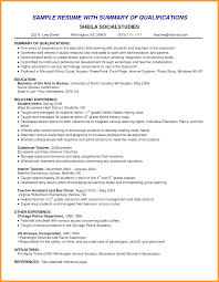 Examples Of A Resume Profile by Resume Professional Summary Examples Resume Professional Summary