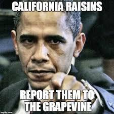 Raisins Meme - pissed off obama meme imgflip