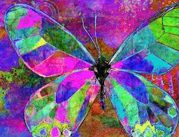 free digital butterfly dreamz joyful colorful butterfly
