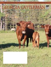 georgia cattleman december 2014 by georgia cattlemen u0027s association