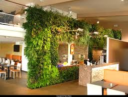 Interior Garden Plants by 186 Best Vertical Gardens Images On Pinterest Vertical Gardens