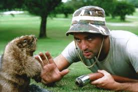 Caddyshack Meme - poll you haven t seen caddyshack sbnation com