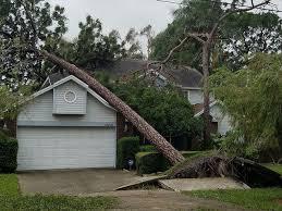 hurricane irma how to register for fema disaster assistance