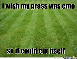 Grass Memes - grass by yanyrose1 meme center