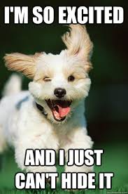 Excited Meme - i m so excited and i just can t hide it excited puppy quickmeme
