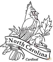 cardinal bird north carolina coloring free printable
