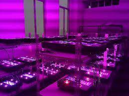 horticultural led grow lights industrial hydroponic greenhouse horticulture led grow light ufo