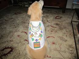 mardi gras pet collar fleurty 8 best new orleans saints apparel gifts images on lsu