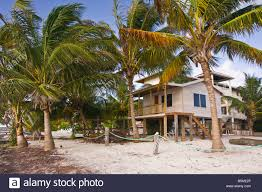 caye caulker belize traditional wooden house on stilts on the