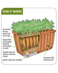 self watering vegetable planter a relatively new and fabulous