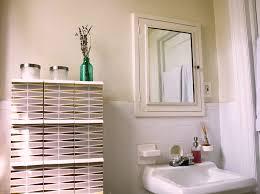 Medicine Cabinet Storage Medicine Cabinet Storage Hacks Home Design Ideas