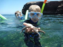Alaska Snorkeling images Small ship family cruising uncruise adventures png