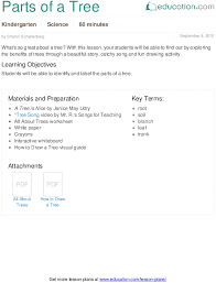 parts of a tree lesson plan education com