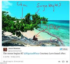 Nude Beach Meme - courtney love s flight mh370 detective work spawns hilarious