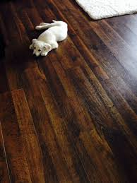 is laminate flooring durable with pets for home
