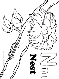 nest coloring page kids coloring