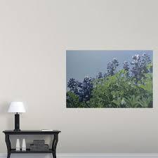 Bluebonnet Flowers - poster print wall art entitled texas bluebonnet flowers