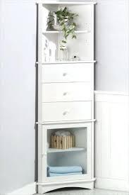 Storage Cabinet Kitchen Corner Storage Cabinet Kitchens Top Furniture 2 Door