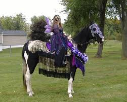 Halloween Costumes Horse 38 Horse Costumes Images Costume Ideas Horse