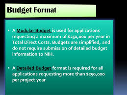 guidelines for preparing an nih budget ppt download