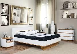 Zebra Home Decor by Calm And Light Zebra Home Concept Modern Bedroom Decor Idea