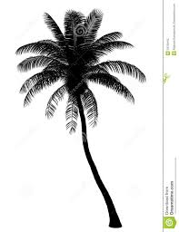 palm tree svg images of palm tree leaf silhouette sc