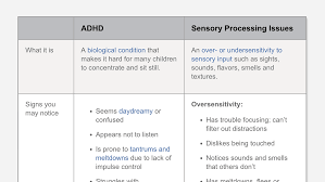 Sensory Seat Cushion Difference Between Adhd And Sensory Processing Disorder In Children