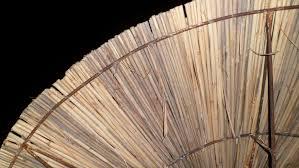 Bamboo Wood Flooring Free Images Night Floor Trunk Umbrella Lumber Hardwood