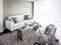 Small Shag Rugs Contemporary Condo Living Room With White Leather Sofa
