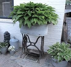 i love this planter filled with hostas from the garden to the