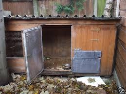 Ferret Hutches And Runs Faq Ferret Housing Faq U0027s Ferrets Forum