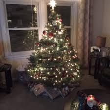 jurek christmas tree farm christmas trees 600 strickler rd