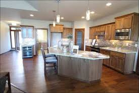 kitchen glass choices for kitchen cabinets frosted glass