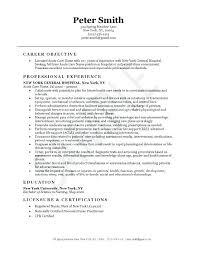 nursing resume objective director of nursing resume sle sle resume objective nursing