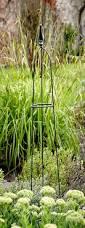 garden products u2013 tom chambers