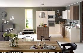 d馗oration cuisine ouverte deco cuisine gris et vert anis avec decoration marron et gris idees