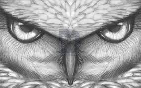 how to draw owl eyes draw an owl face step by step drawing