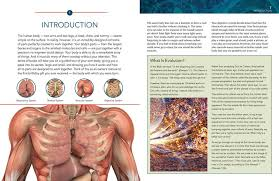 Anatomy And Physiology Introduction To The Human Body Introduction To Anatomy U0026 Physiology The Musculoskeletal System