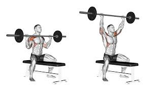 Flat Bench Barbell Press The Barbell Overhead
